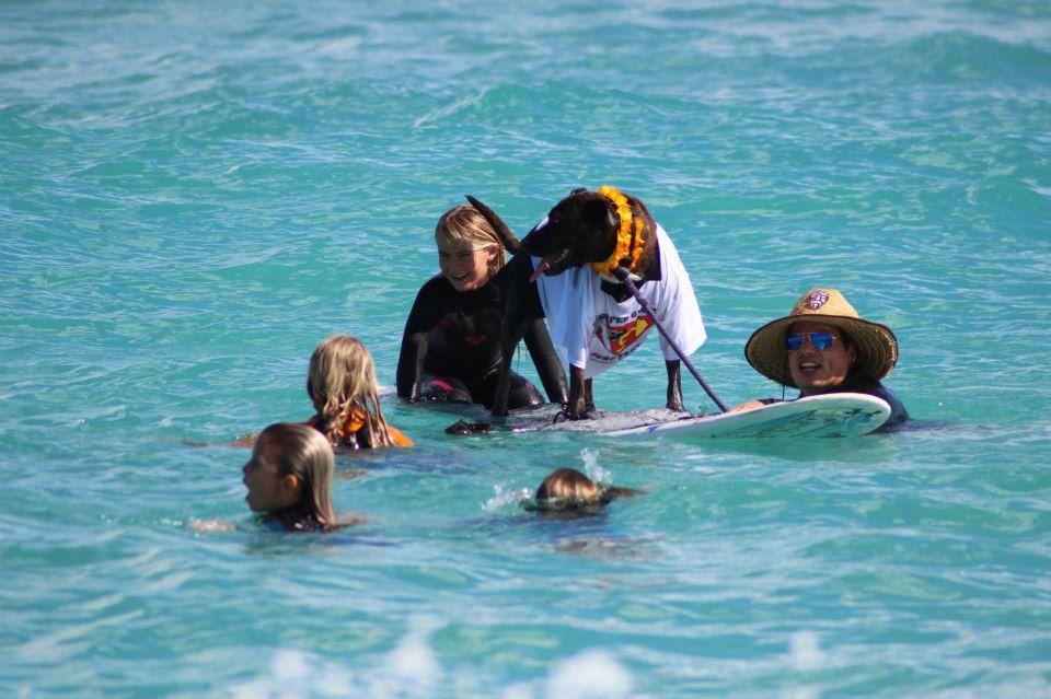 Having fun in the surf