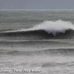 Peter Wilson - Bogworks, New plymouth, New zealand