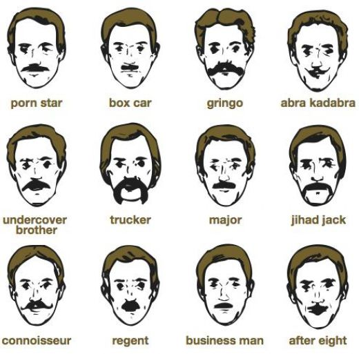 The different moustache types