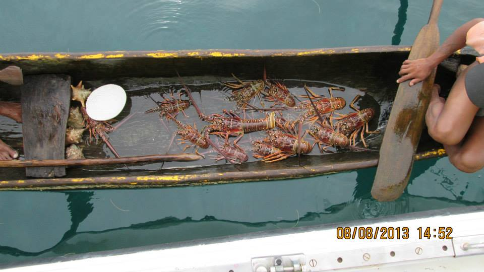 Pick your own lobster!