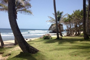 SURFING BARBADOS – with Barbados Surf Trips.