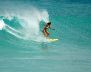 Curacao surfing forum: Surf spots, surf report and surf guide.