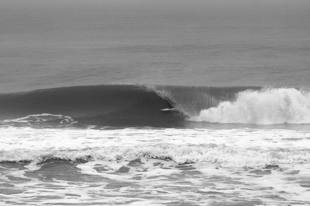 Brandon Olin Todd - Cold Carolina Beach