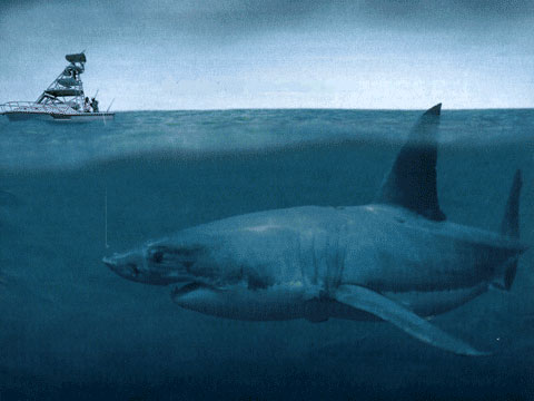 Megalodon shark, compared to a normal sized fishing boat.